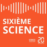 Logo du podcast Sixieme Science #10 - Sur les traces de l'arche d'alliance