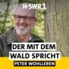 Logo of the podcast Peter Wohlleben - Der mit dem Wald spricht