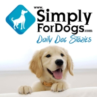 Logo of the podcast SimplyForDogs