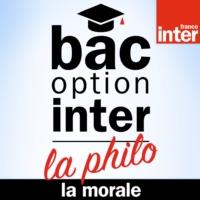 Logo du podcast Bac Philo Option Inter - La Morale