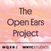 Logo of the podcast The Open Ears Project