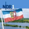 Logo du podcast Die Top Schleswig-Holsteiner