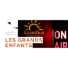 Logo du podcast Les Grands Enfants