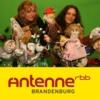 Logo du podcast Der Zappelduster-Podcast | Antenne Brandenburg