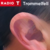 Logo of the podcast Trommelfell