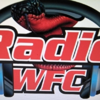 Logo of the podcast FLAMES V ROVERS