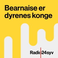 Logo of the podcast Året Der Gik i Bearnaise I