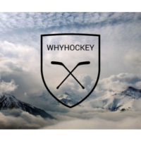 Logo of the podcast WhyHockey 6.20: Druid Family Approved! (Mike Hoffman, Vinnie Viola, Draft)