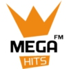 Logo du podcast MEGA HITS - Podcast Mega Áudios
