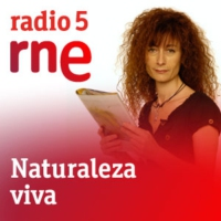 Logo of the podcast Naturaleza y medio ambiente - Muerte de cetáceos - 16/07/12