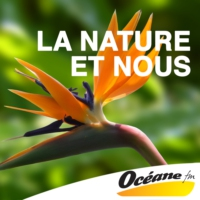 Logo du podcast Bretagne vivante : une association active au plus près de la nature
