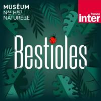 Logo du podcast Bestioles