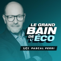 Logo of the podcast Le Grand Bain de l'Éco - PASCAL PERRI