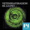 Logo du podcast Vetenskapsradion På djupet