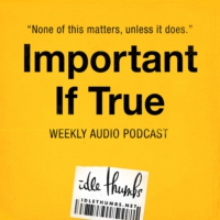 Logo du podcast Important If True 56: In the Shade of the Puffin