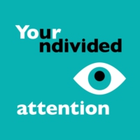 Logo du podcast Your Undivided Attention