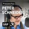 Logo du podcast Peter Schneider