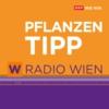 Logo du podcast Radio Wien Pflanzentipp