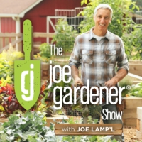 Logo of the podcast The joe gardener Show