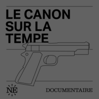 Logo of the podcast Le Canon sur la Tempe