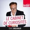 Logo du podcast Le cabinet de curiosités