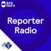 Logo of the podcast Reporter Radio