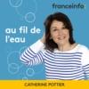 Logo of the podcast Au fil de l'eau