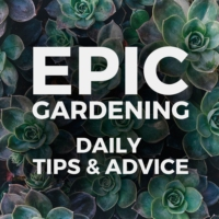 Logo du podcast Epic Gardening: Daily Growing Tips and Advice
