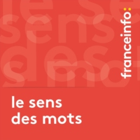 Logo du podcast Le sens des mots. Influenceur, un anglicisme au service du marketing