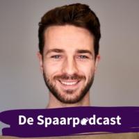 Logo du podcast De Spaarpodcast