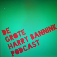Logo of the podcast De Grote Harry Bannink Podcast