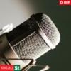 Logo du podcast Radio Steiermark-Journal um 17.30 Uhr