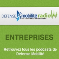 Logo of the podcast De l'Armée de l'Air à la planète web - 07/04/2015