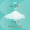 Logo of the podcast The Sound of Salt Forming