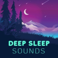 Logo du podcast Deep Sleep Sounds