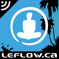 Logo of the podcast Le Flow Live : oops