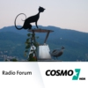 Logo du podcast COSMO Radio Forum