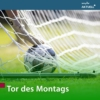 Logo du podcast Tor des Montags von MDR AKTUELL