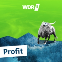 Logo of the podcast Profit - Das Thema: Die neue CO2-Abgabe 09.01.2021