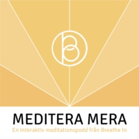 Logo of the podcast Meditate more with Chris Germer
