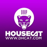 Logo du podcast Deep House Cat