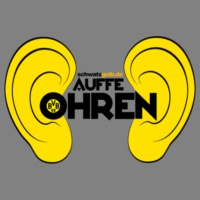 Logo du podcast Auffe Ohren #88: Rollin' and Tumblin'