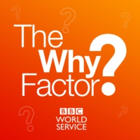 Logo of the podcast The Why Factor