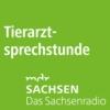 Logo du podcast MDR SACHSEN Tierarztsprechstunde
