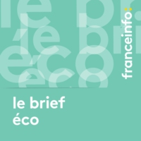Logo of the podcast Le brief éco. Prêts garantis par l'État : gare à l'augmentation de la dette privée