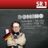 Logo du podcast Domino: Deutsch-Französische Kindernachrichten
