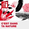 Logo of the podcast C'est dans ta nature