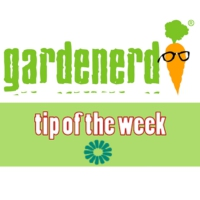 Logo du podcast Gardenerd Tip of the Week