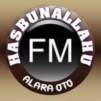 Logo of radio station HASH FM