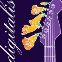 Logo de la radio SomaFM - Digitalis